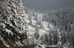 snö i lappland